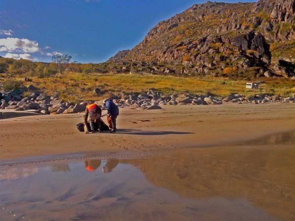 Экспедиционеры выносят шмурдяк с пляжа.