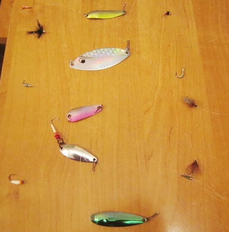 Подблестки для озерной рыбалки