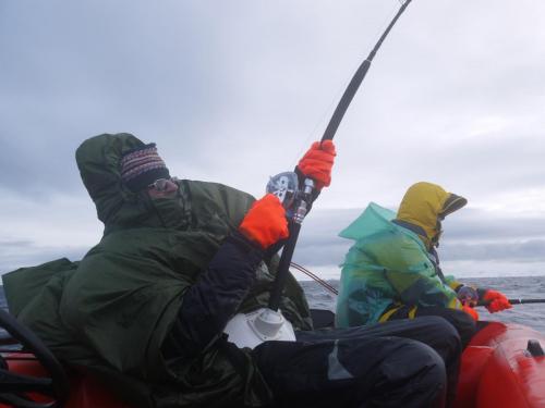 Рыбалка весной 2017 Выевнаволок